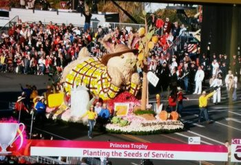 Rose Parade Float Decoration